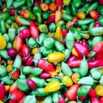 Caribische season pepers